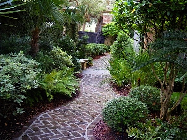 Home grown landscaping horticulture services for Landscaping rocks charleston sc